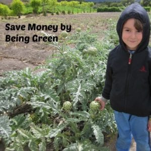 6 Tips to Save Money by Being Green