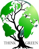 Making Green Consumer Choices