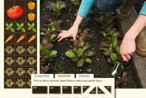 Planning Your Garden For The Entire Season- 3 Critical Gardening Tips