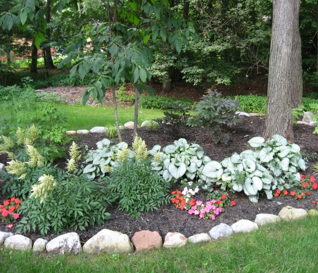 Landscaping Design Tips for Shady Areas