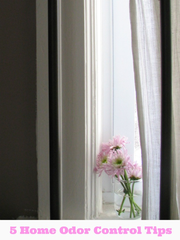 5 Home Odor Control Tips