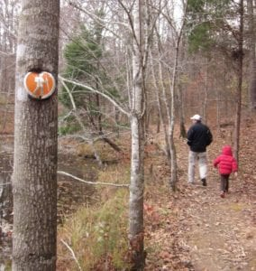 How to Take Your Kids Hiking