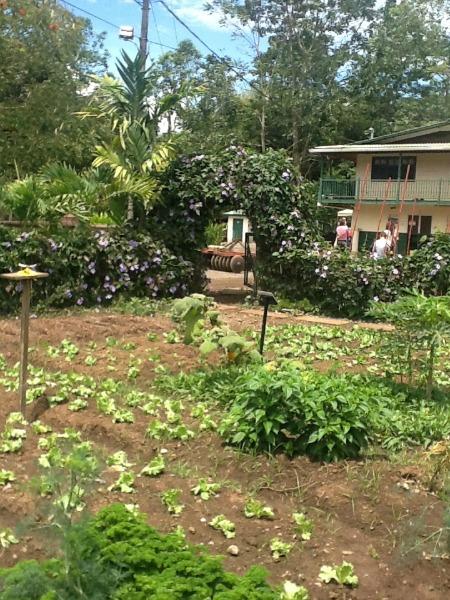 Casa Turire Gardens