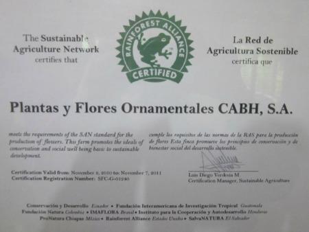 Rainforest Alliance Certificate / Family Focus Blog