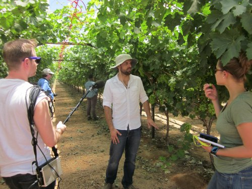 Groupo Alta farm tour grapes