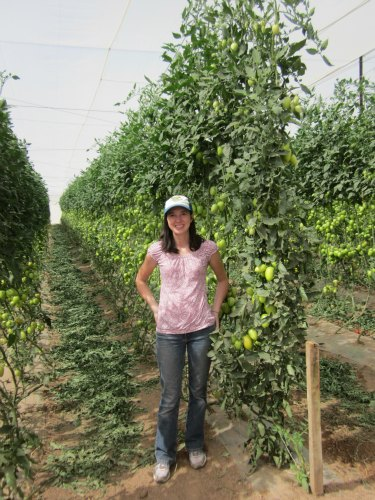 Scarlet Paolicchi with fair trade tomatoes grown by groupo alta