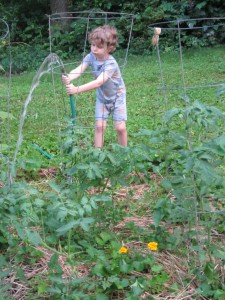 5 ways to get kids to eat produce- plant a garden