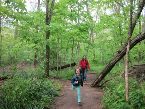 scavenger hike- 10 fun ideas to get the kids outdoors