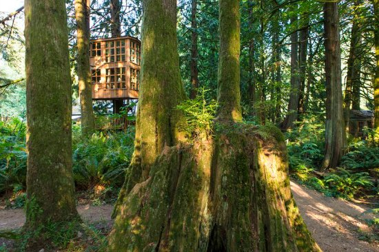 Treehouse Masters treehouses- 2 stories exterior