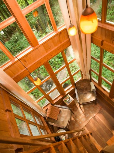 Marvelous ... Picture Treehouse Masters Interior