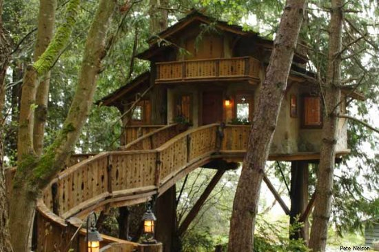 World Renowned Treehouses on Hobbit House Floor Plans