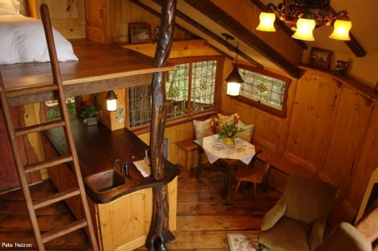 heidi treehouse interior