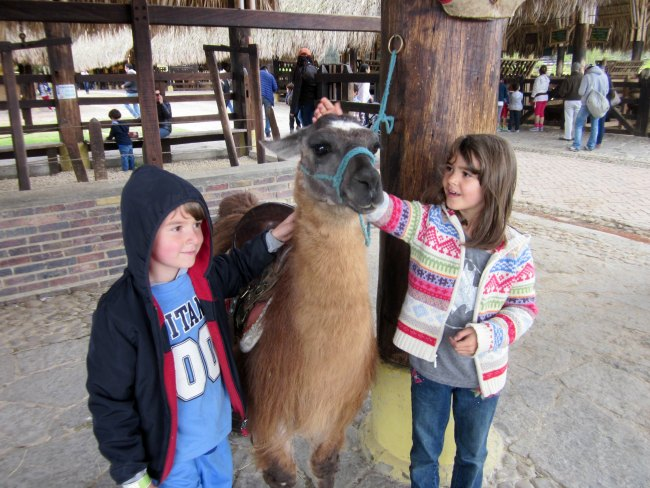 Panaca Animal Park- things to do in Bogota Colombia