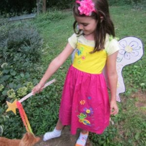 How To Make Fairy Wings And Wand