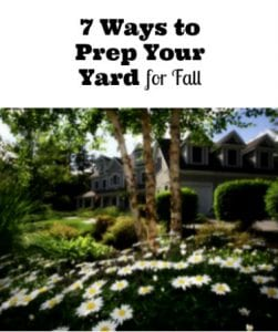 7 Ways to Prep Your Yard for Fall