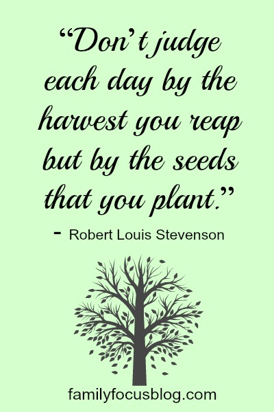 The Seeds That You Plant- inspirational quote