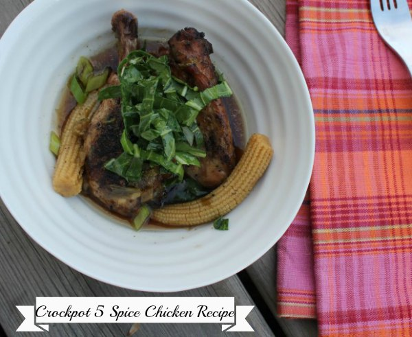 crockpot recipe 5 spice chicken