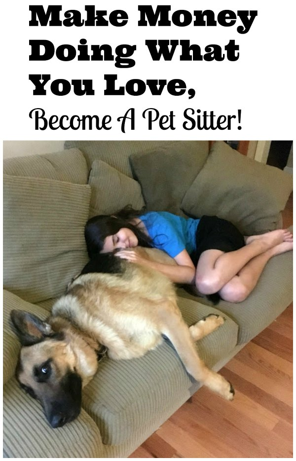 Find Local Dog Sitters Or Start A Dog Sitting Business With Rover