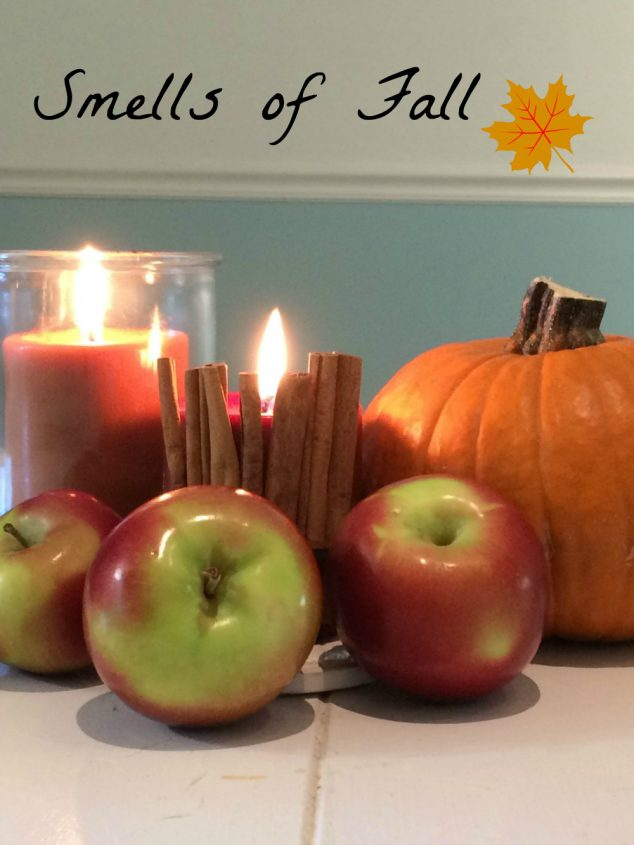 3 Ways To Make Your Home Smell Like Fall Family Focus Blog