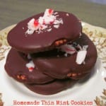 Easy Homemade Thin Mint Cookies