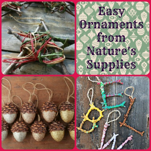 Easy DIY Ornaments from Nature's Supplies