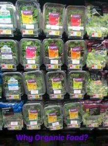 Why Organic Food?