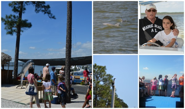 Dolphin Cruise Orange Beach