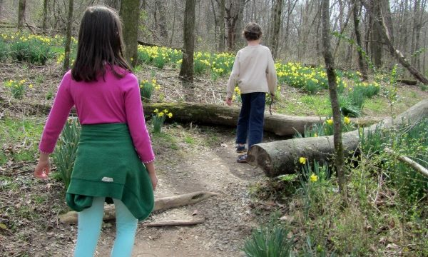 Fun Outdoor Activities For Families