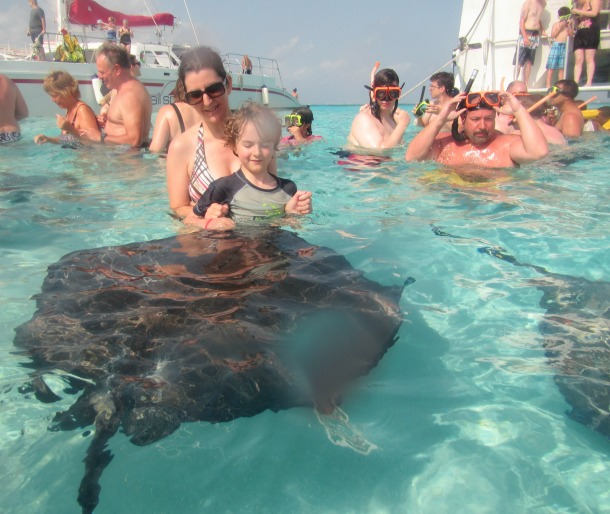 sting ray city grand cayman