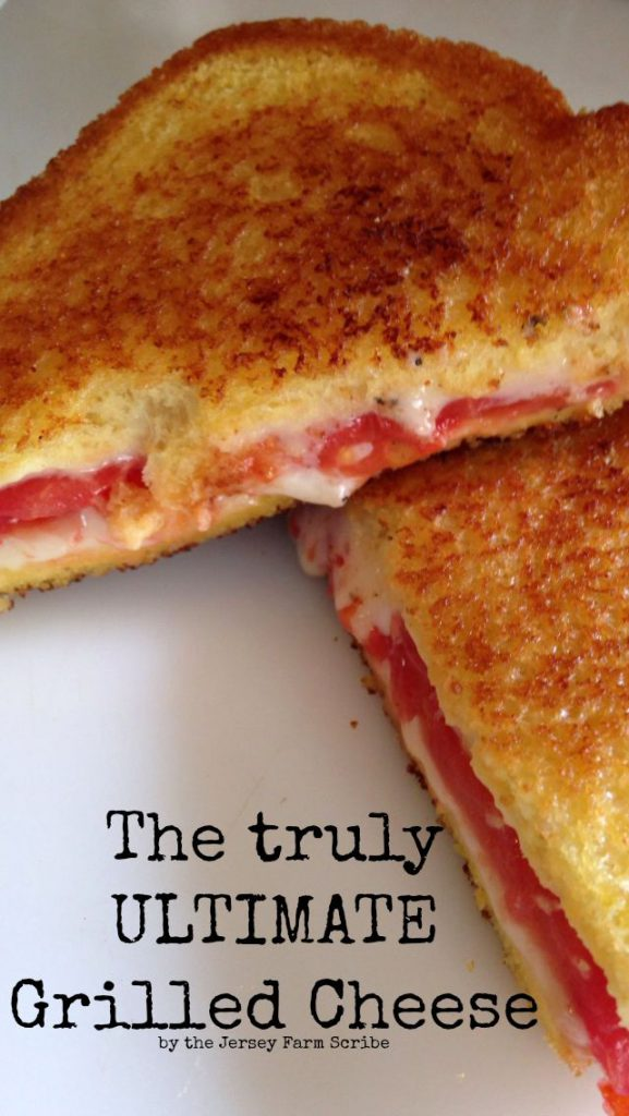 Mama's Best Broiled Tomato Sandwich Recipe — Dishmaps