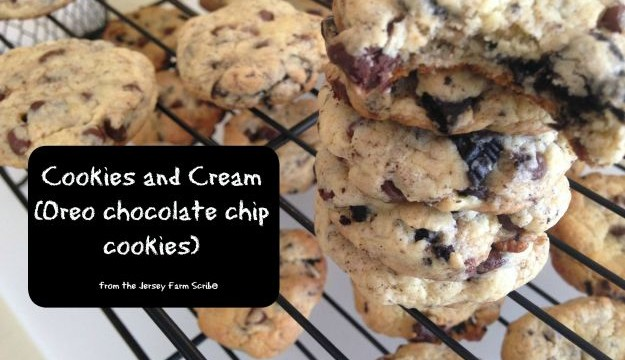 Oreo Chocolate Chip Cookies Recipe