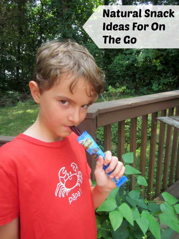 natural snack ideas for back to school