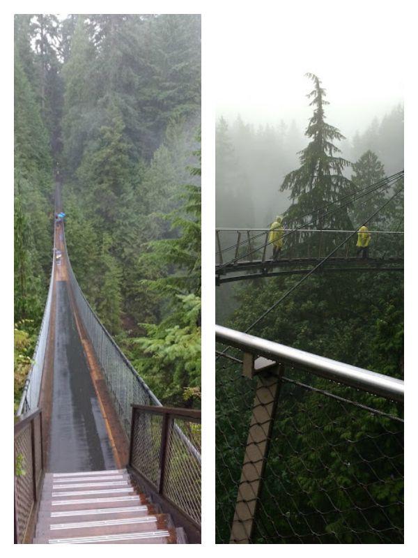 Capilano suspension bridge and Capilano CiffWalk