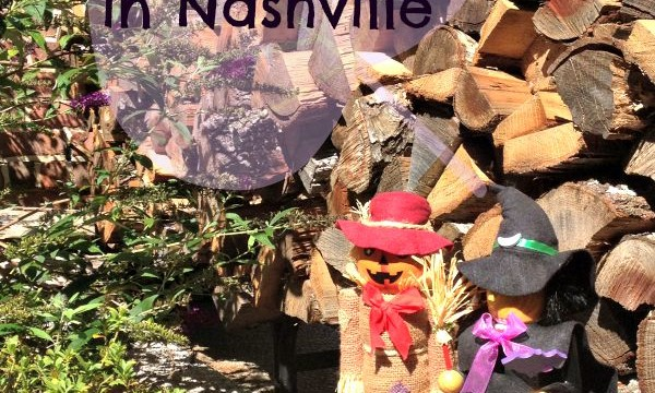 Fall Family Activities in the Nashville Area