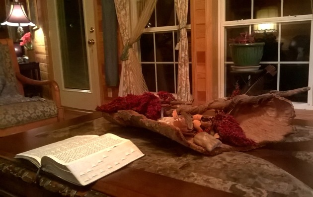 tree bark as Coffee Table Center Piece