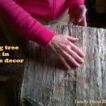Tips For Using Tree Bark In Interior Design