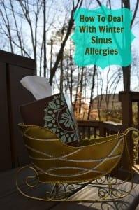 winter sinus allergies