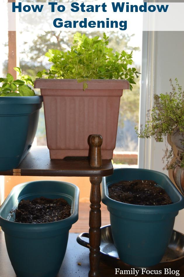 How to start herb window gardening