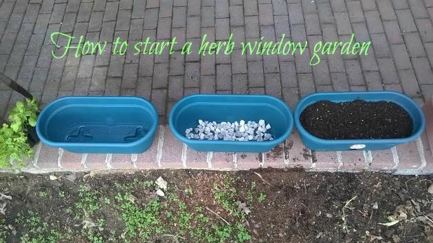 how to start window gardening