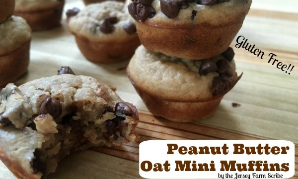 Delicious Gluten Free Muffins Recipe: Peanut Butter Chocolate Chip Muffins