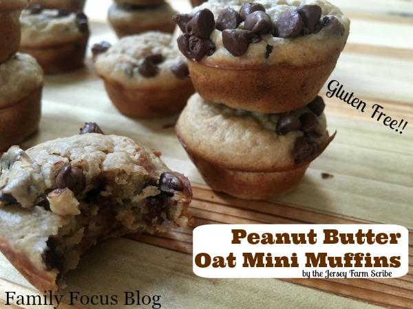 delicious gluten free muffin recipe