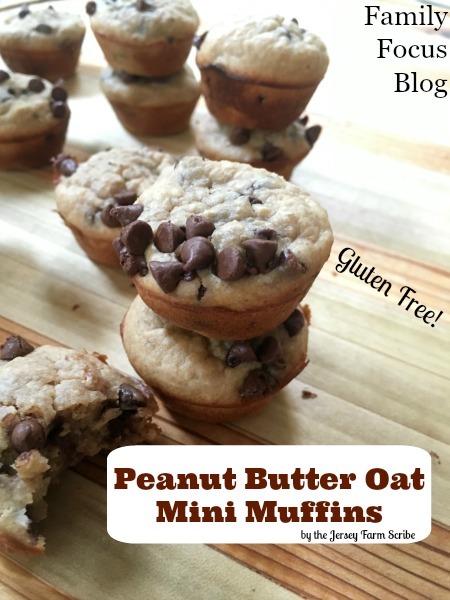 Easy gluten free muffins recipe