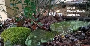 Make A Moss Rock Garden: A Primitive And Ancient Wonderland