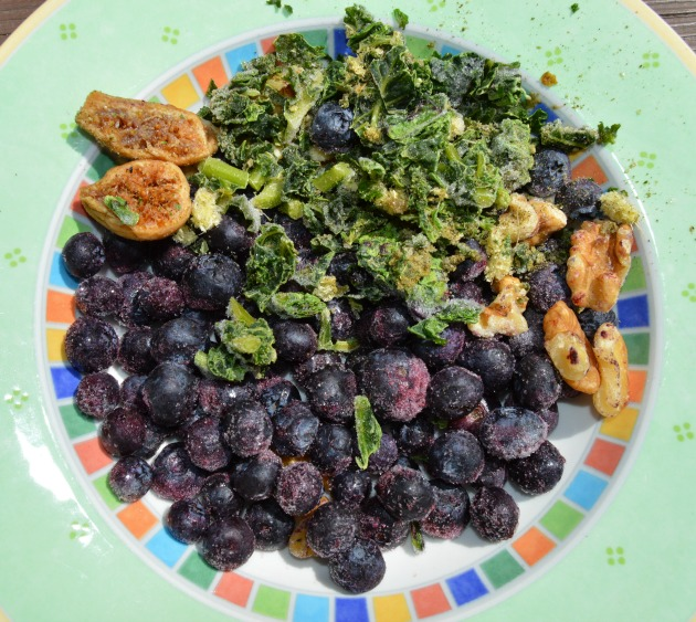 blueberry healthy smoothie ingredients