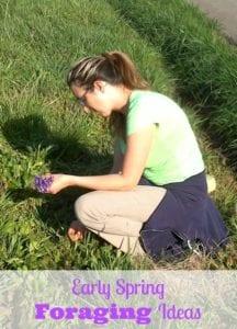 Early Spring Foraging & Grape, Violet, Dandelion Salad Recipe