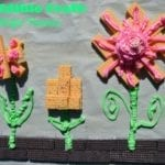 Edible Wafer Flowers Craft Inspired By Voortman Wafer Contest