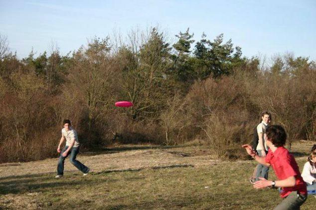 family-frisbee