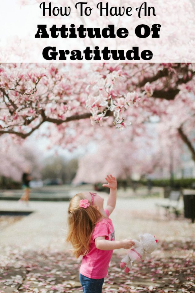 what is an attitude of gratitude