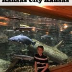 7 Fun Things To Do In Kansas City Kansas