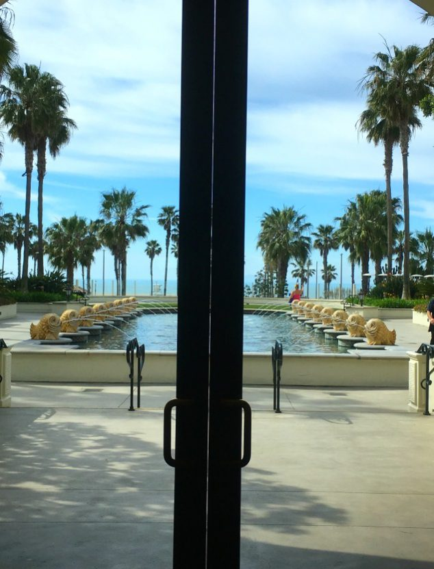 view out back lobby door